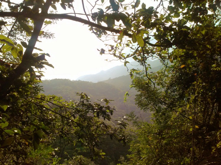 The view from the Old Village Path down Nam Shan to Mui Wo. Image (c) Benjamin J Spencer