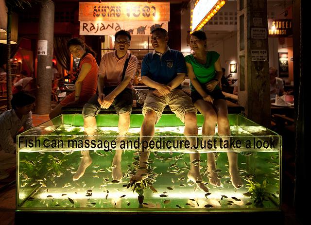 fish-massage